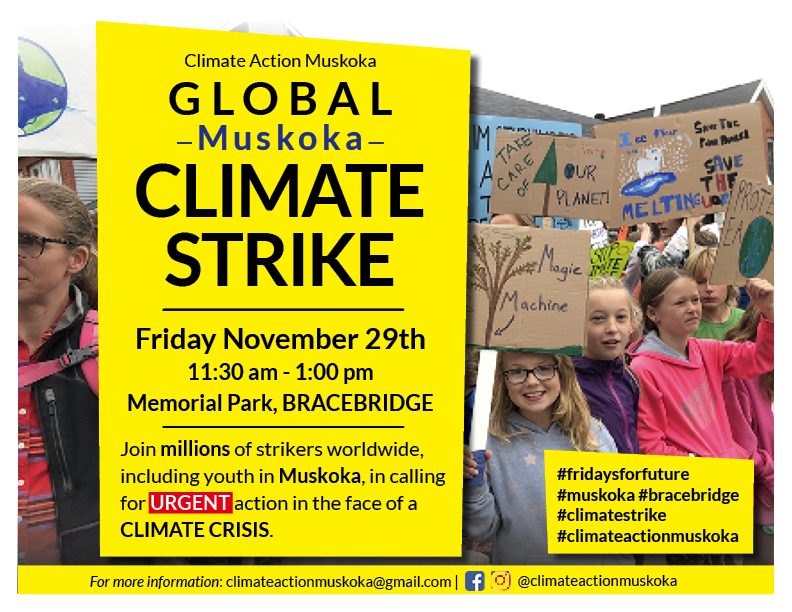 Climate Strike in Muskoka on November 29