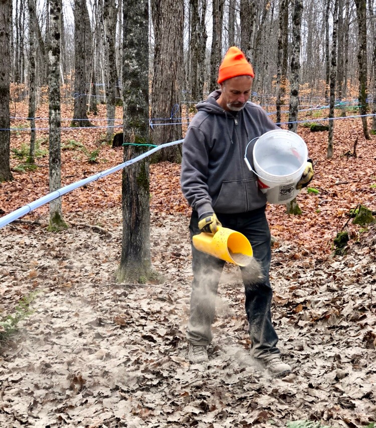 Picture of volunteer scattering wood ash in forest.